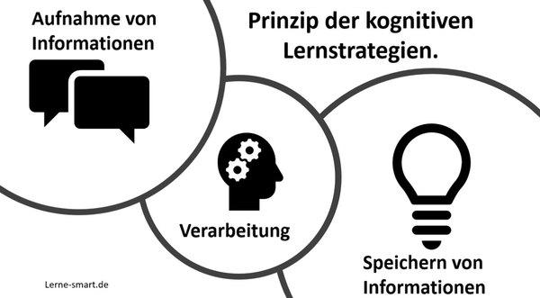 kognitive Lernstrategien